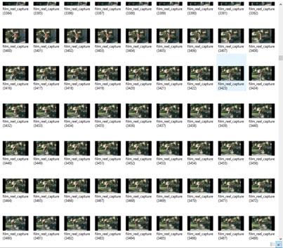 Film Transfers - Super 8 & 8mm | PhotoScanning ca